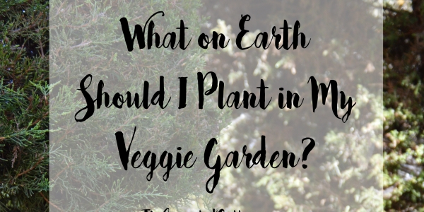 Easy tips and strategies for planning your best veggie garden yet!